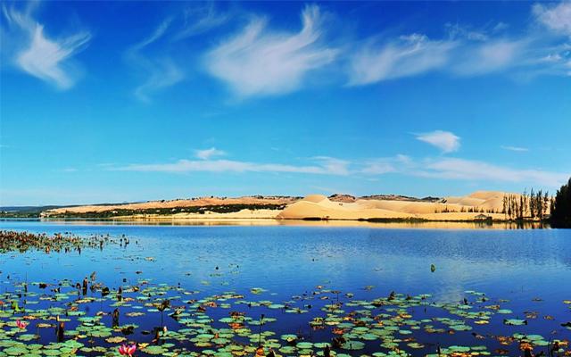 Bàu Trắng - Bàu Sen: Điểm du lịch ở Phan Thiết